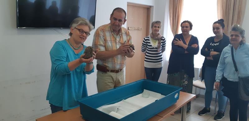 Młodzi mieszkańcy tymczasowego domu dla jeży wraz ze swoimi opiekunami odwiedzili Lubomirskiego.  (47)