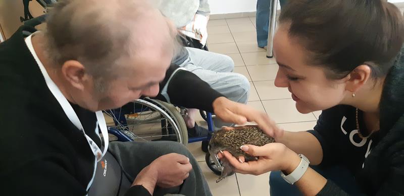 Młodzi mieszkańcy tymczasowego domu dla jeży wraz ze swoimi opiekunami odwiedzili Lubomirskiego.  (84)